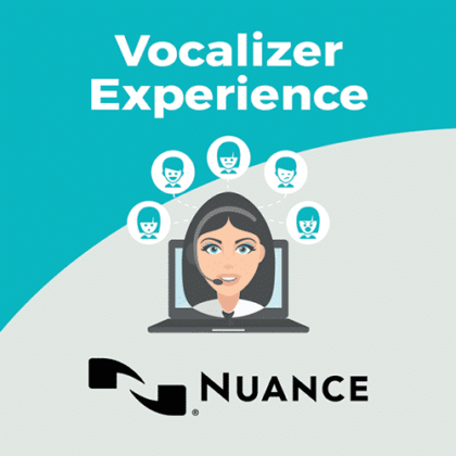 Nuance Vocalizer Experience