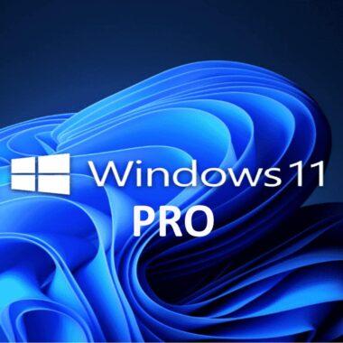 Ms Windows 11 Pro (clé de produit)